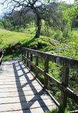 Мост к за пределами Стоковые Изображения