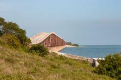 Мост к нигде в большом ключе сосны Стоковые Изображения
