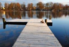 мост морозный стоковая фотография