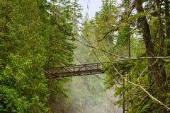 Мост над водопадами реки англичанина в острове ванкувер, ДО РОЖДЕСТВА ХРИСТОВА Стоковое фото RF