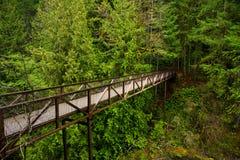 Мост над водопадами реки англичанина в острове ванкувер, ДО РОЖДЕСТВА ХРИСТОВА Стоковая Фотография