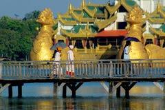 мост над гулять людей деревянный Стоковая Фотография