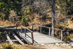 мост над потоком деревянным Стоковое фото RF