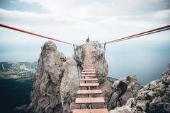Мост над проломом в горах стоковое фото rf