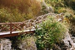 Мост над горой Стоковая Фотография