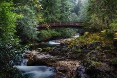 Мост на меньшем Qualicum падает захолустный парк стоковая фотография rf