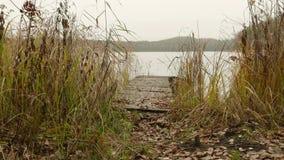 Мост на озере Дневное время осени Ровная съемка тележки сток-видео