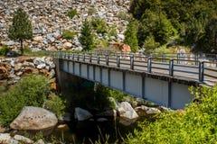 Мост над потоком в глуши Стоковое Фото