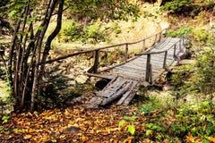 мост над потоком деревянным Стоковая Фотография