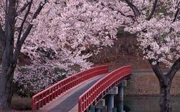 Мост над рекой внутри цветочного сада Стоковое Фото