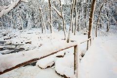 Мост над рекой в долине Стоковая Фотография RF