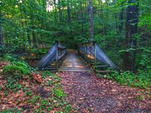 Мост на следе стоковое изображение rf
