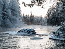 Мост на холодном зимнем дне Стоковое фото RF
