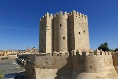 Мост на Cordoba Испании - природа и предпосылка архитектуры Стоковые Изображения