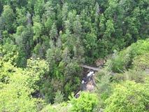 Мост ниже Стоковые Изображения RF