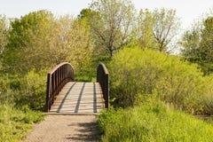 Мост дорожки в лете Стоковые Изображения