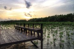 мост дорожки на заходе солнца Стоковые Фотографии RF