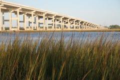 Мост от болота Стоковые Фотографии RF