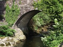 Мост плюща, Ivybridge, Девон Великобритания Стоковые Фото