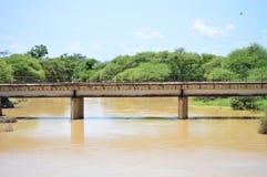 Мост поезда Стоковые Изображения