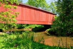 мост покрыл crrek сверх Стоковые Изображения RF