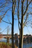 мост покрыл ticino реки стоковое фото rf