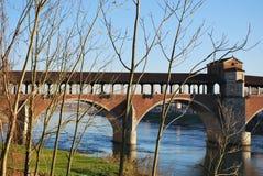 мост покрыл ticino реки стоковая фотография