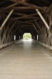 мост покрытый внутрь стоковые изображения