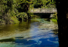 Мост прогулки над потоком в родном кусте NZ Стоковое фото RF