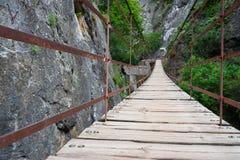 Мост планки Стоковое Изображение RF