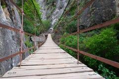 Мост планки Стоковое Изображение