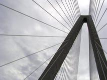 Мост реки бондаря стоковые фото