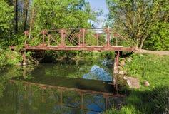 Мост реки леса Стоковое Фото