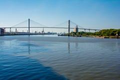 Мост Рекы Savannah стоковые фото
