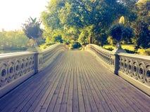 Мост смычка в винтажном стиле стоковые фотографии rf