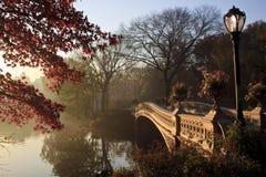 мост смычка Стоковое фото RF