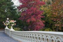 мост смычка Стоковое Фото
