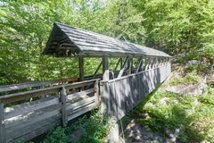 Мост сосны часового Стоковое фото RF
