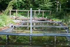 Мост с водой в миниатюре/ Стоковое Изображение
