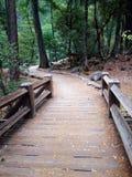 Мост следа Стоковые Изображения RF