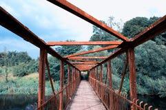 Мост увиденный от внутренности Стоковые Изображения