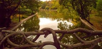 Мост уха Стоковое Изображение