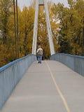 Мост Эрик Harvie стоковое изображение