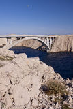 мост стоковые фото
