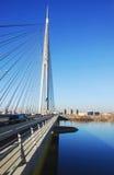 Мост Ada в Белграде Стоковая Фотография