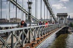 мост budapest цепная Венгрия Стоковое фото RF