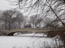 Мост Central Park шара стоковое фото rf