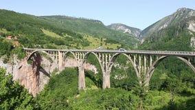 Мост Durdevica каньона Тары над рекой Черногорией Тары Шина или минибус любые автомобили управляют каньоном Тары моста сильно сток-видео