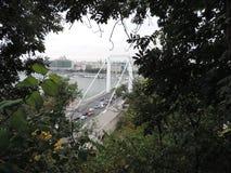 Мост Elisabeth в Будапешт Стоковое Изображение RF