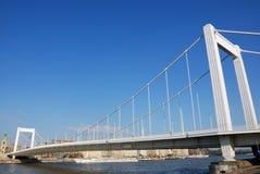 мост elizabeth стоковое изображение rf